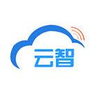 云智视像科技(上海)有限公司