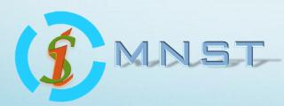 武汉微纳传感技术有限公司